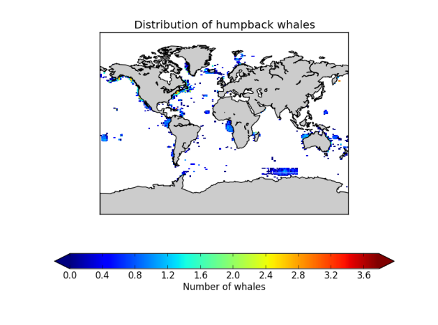 whale_distribution